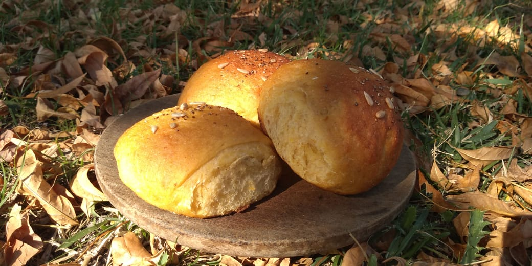 Pan de Calabaza 3u. – «La Vecina Tierra»